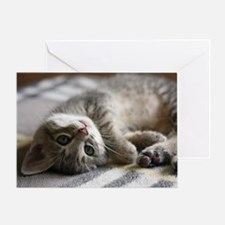 Lying kitten Greeting Card
