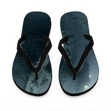 9068788 Flip Flops