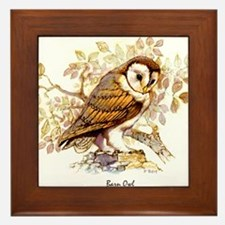 Barn Owl Peter Bere Design Framed Tile