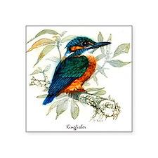 "Kingfisher Peter Bere Design Square Sticker 3"" x 3"