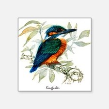 "Kingfisher Peter Bere Design Square Sticker 3"" x 3"