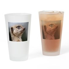 Meerkat Searching the Skies Drinking Glass