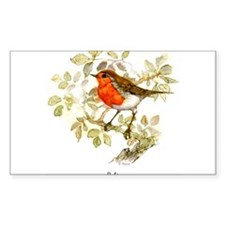 Robin Peter Bere Design Decal