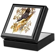 Nuthatch Peter Bere Design Keepsake Box