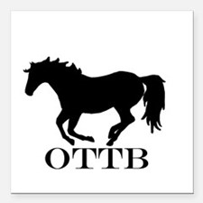 """Off Track Thoroughbred Square Car Magnet 3"""" x 3"""""""