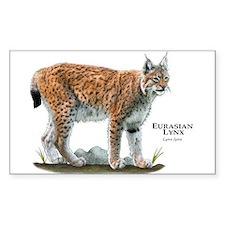 Eurasian Lynx Decal