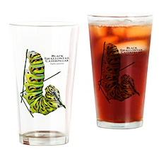 Black Swallowtail Caterpillar Drinking Glass