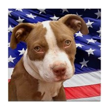 American pitbull puppy Tile Coaster