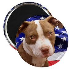 American pitbull puppy Magnet