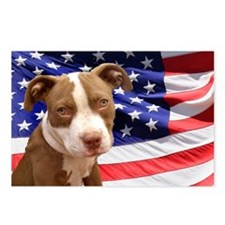 American pitbull puppy Postcards (Package of 8)
