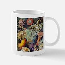sea anemones-sq Mug
