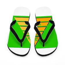 3Ps Symbol 1 Flip Flops