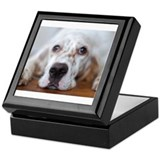 English setter Square Keepsake Boxes