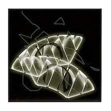 D42.SeeMuschell 005 Keramik.Art.Tile