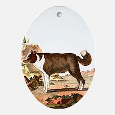 Dog (Icelandic Sheepdog) Ornament (Oval)