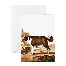 Dog (Icelandic Sheepdog) Greeting Card