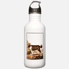 Dog (Icelandic Sheepdog) Water Bottle