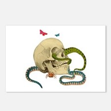 Skull And Snakes Postcards (Package of 8)