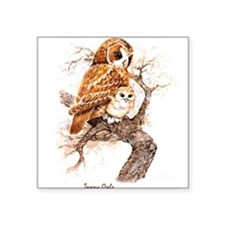 """Birds and Young """"Tawny Owls"""" Peter Bere Design Sti"""