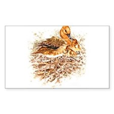"""Birds and Young """"Wigeon Ducks"""" Peter Bere Design S"""