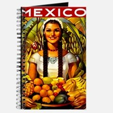 Vintage Mexico Fruit Travel Journal