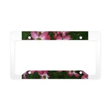 Simply Dogwood License Plate Holder