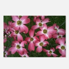 Simply Dogwood Postcards (Package of 8)