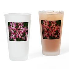 Simply Dogwood Drinking Glass