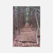 Trail of Seclusion Rectangle Magnet