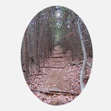 Trail of Seclusion Oval Ornament