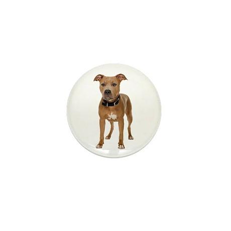 Pit Bull Mini Button