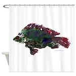 Bright Fish Print Shower Curtain