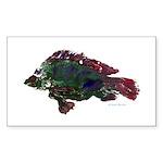 Bright Fish Print Sticker