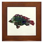 Bright Fish Print Framed Tile