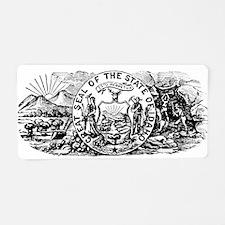 Vintage Idaho Banner Aluminum License Plate