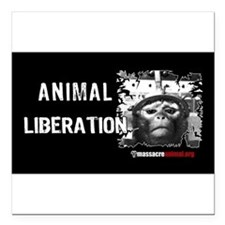 """Funny Animal abuse Square Car Magnet 3"""" x 3"""""""