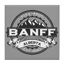 Banff Grey Tile Coaster