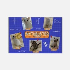 Mythbuster Fosters Blueprint Rectangle Magnet