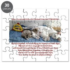 CF Prayer w/ the Mythbuster Fosters Puzzle