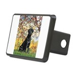 TILE-Spring-Lab1.png Rectangular Hitch Cover