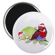 Trish's Parrots Christmas Magnet