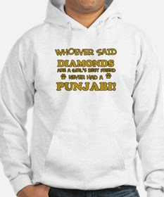 Punjabi Cat breed designs Hoodie