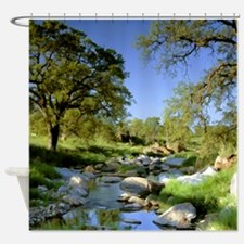 Countryside Creek and Trees Shower Curtain