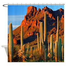 Arizona Desert Saguaro Cactus and Mountains Shower