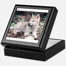 """Wolf Cub"" Keepsake Box"