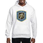 Rhode Island Corrections Hooded Sweatshirt