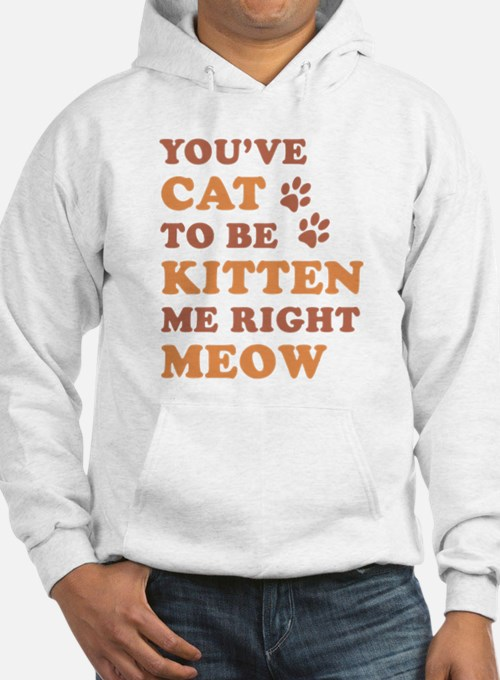 You've Cat To Be Kitten Me Hoodie