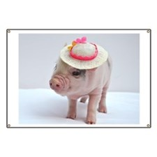 Micro pig wearing Summer hat Banner