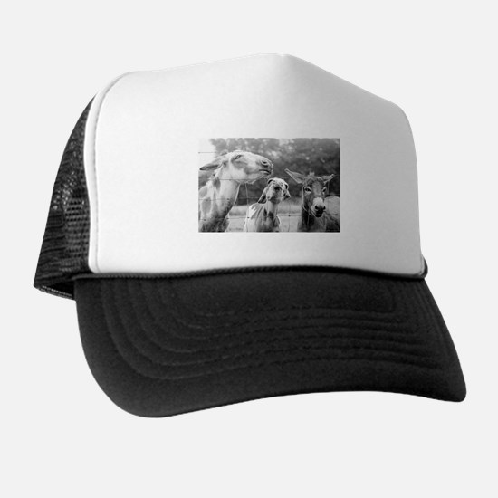 Love Me Some Donkeys Trucker Hat