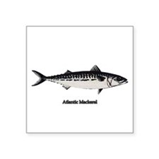 Atlantic Mackerel Sticker